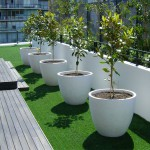 St Kilda Road - Rooftop