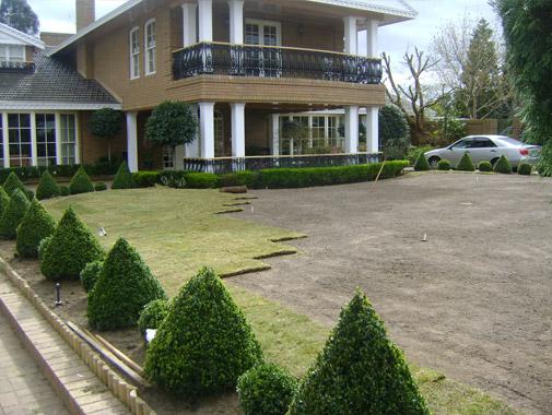 Templestowe – Residential Lawn