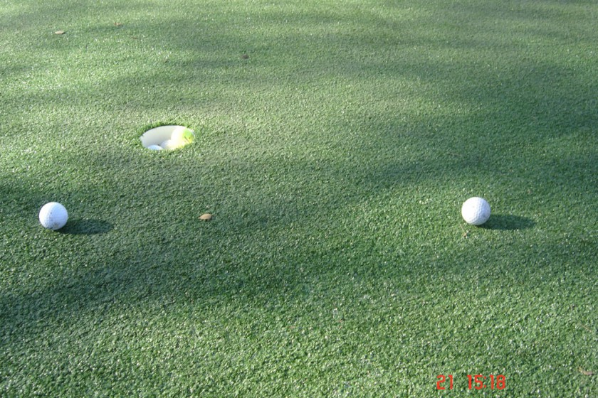 Drouin – Backyard Putting Green