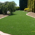 Narre Warren - Front Lawn